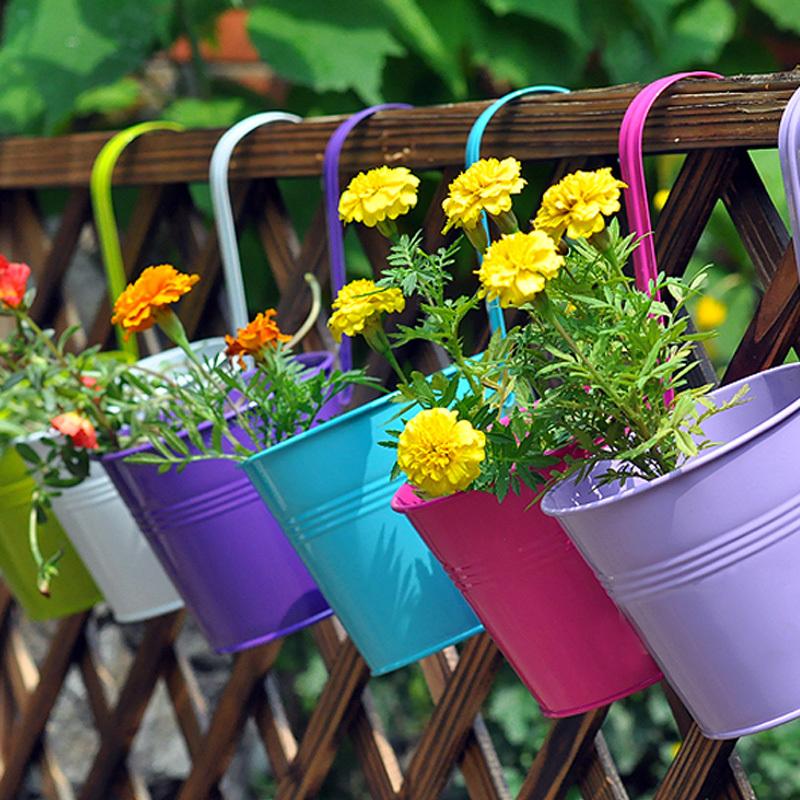 Flower Plants For Home Garden Garden Plant Planter Home