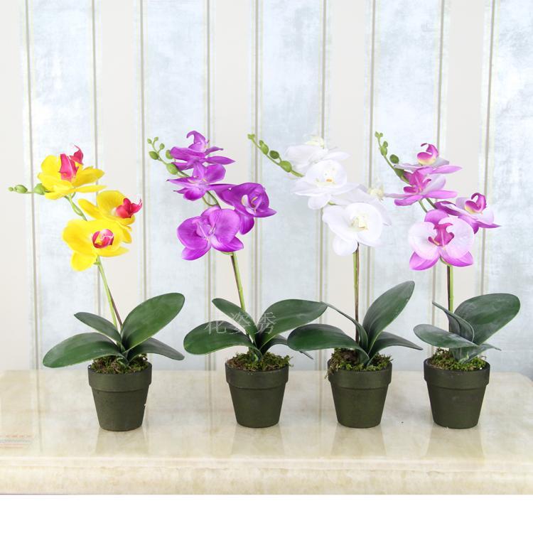 flower porcelain flower pot butterfly orchid set fashion decoration