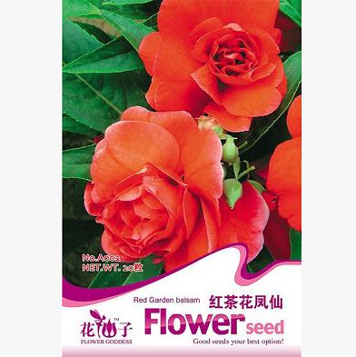 Flowers Black tea Impatiens,Black tea Impatiens seeds, Flowers seeds,about 20 particles(China (Mainland))