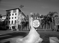 2014 Custom Made Mermaid Wedding Dresses Long Train Luxury Wedding Dresses Backless sexy wedding dress wedding dress