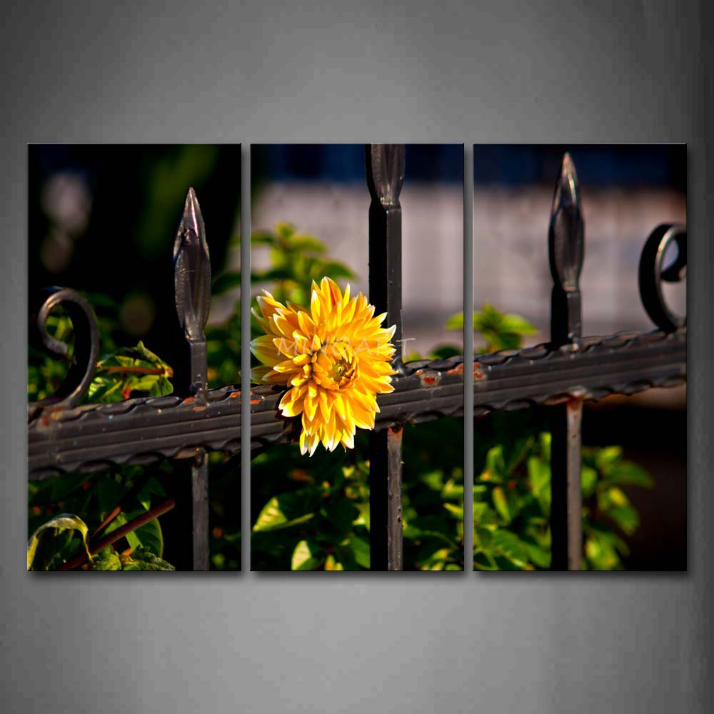 3 Piece Wall Art Painting Yellow Flower On The Iron Of Fence Print On Canvas The Picture City 4 Pictures(China (Mainland))