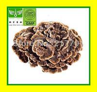 200g[Sale] 100% natural  Coriolus Versicolor Polysaccharides (PSK)   40%