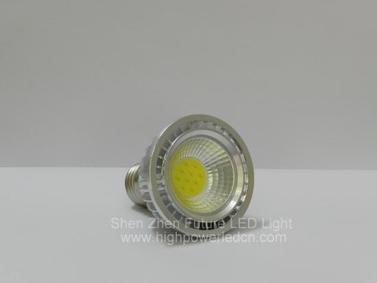 2pcs/lot Free shipping ,High power PAR20 E27/E14 GU10,GU5.3 MR16 10W COB LED spot light , 10W COB led bulb 2pcs/lot(China (Mainland))