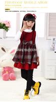 3-15yrs 5PCS/lot Wholesale Baby Girls Dresses Fashion New Baby Girls brand Plaid Dress 100% cotton Free shipping DA609