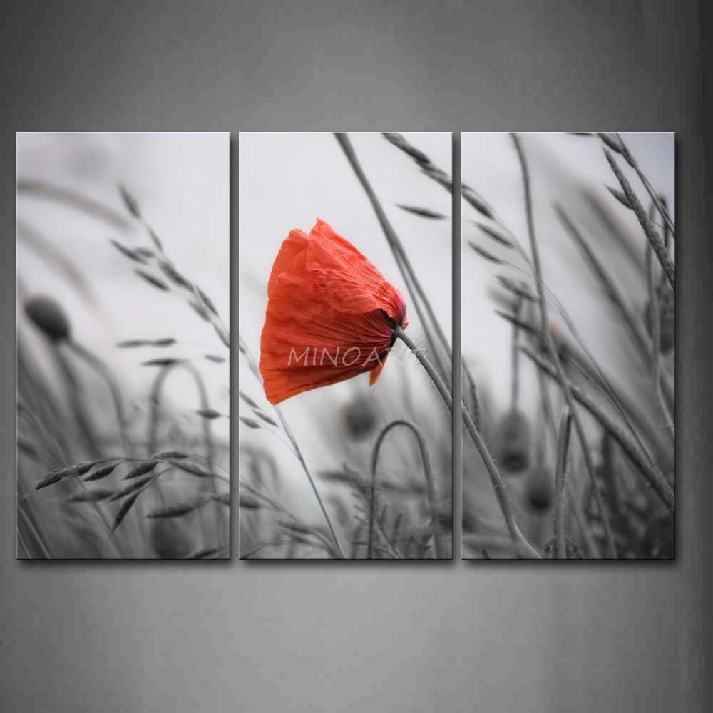 3 peça Wall Art Painting bonito Poppy em vermelho brilhante no gramado impressão na lona o retrato flor 4 fotos(China (Mainland))