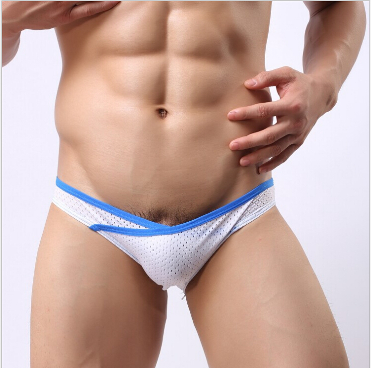 2015 New Men s underwear male mesh Net briefs Super low waist home casual breathable Sexy