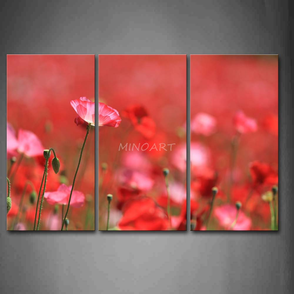 Poppy Red Paint Promotion Online Shopping For Promotional