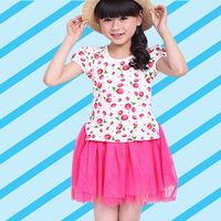 Girls Strawberry Print Casual Dress Summer Cotton pink/color denim Bebe Disfraz clothes 3 style  Vestido infantil menina
