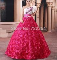 pink/blue/red full floral sissi medieval dress Medieval Renaissance Gown Costume Victorian Gothi Lol/Marie Antoinette/ Belle
