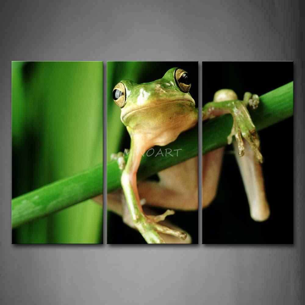 3 peça Wall Art Painting sapo abraço A um ramo verde imagem de impressão na lona animais 4 The Picture Home Decor impressões petróleo(China (Mainland))