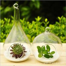 National moss hanging glass vase bottle succulents bottle vase round micro landscape ecology bottle(China (Mainland))