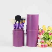 Perfect Makeup Kit, animal hair brushes makeup brush cosmetic brush 12 Set HZ-01