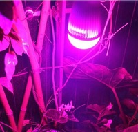 (Customized)E27 6W Red Blue Plant Grow LED Light For Hydroponic Garden Greenhouse