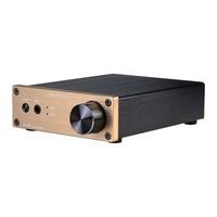 SMSL SA-60 60*2 TPA3116 Class D Big Power HIFI Digital Amplifier Power Supply gold color
