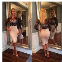 2015 Spring  Slim Waist  Long Sleeve Lace Dresses Mesh Perspective Sexy  Dresses Women Tropical Vestidos Bandage Pencil Dresses