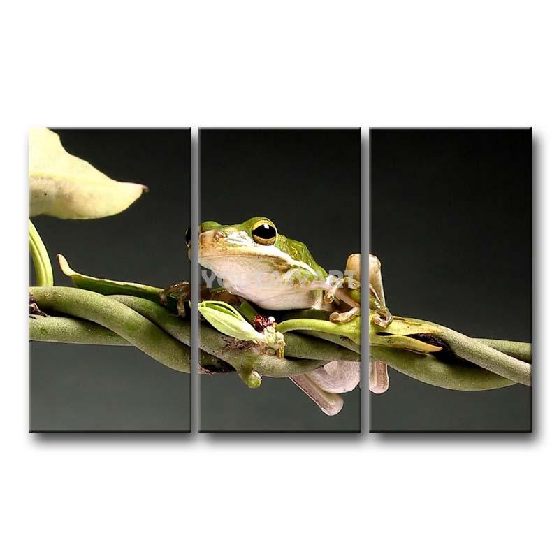 3 peça pintura em Canvas Wall Art Red Eyed Tree Frog descanso no ramo imprimir a imagem imagens de animais óleo para Home Decor(China (Mainland))