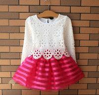 2015 girls suit veil , lace stitching dresses for girls , ladies long sleeve princess dress children