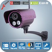 1080P 2.0 Megapixel HD Wireless IP Camera ONVIF H.264 Infrared Night Vision Outdoor Waterproof Surveillance Security Cameras