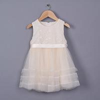 New 2015 summer girls lace embroidery grenadine tutu dress baby girls party dress 5pcs /lot