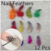12 Pieces DIY Nail Art Feather Decoration Acrylic UV Gel Hair Design Jewelry Manicure Tips Salon (NR-WS88)