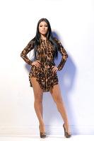 Tropical Vestido Oncinha Sexy Women Dress Plus Size Leopard Dress Long Sleeve Vestido De Festa Evening Party Vestidos Femininos