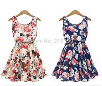 1Strip 2015 NEW Hot Sale Sexy Ladies Women Sweet Chiffon Sleeveless Printed Dress