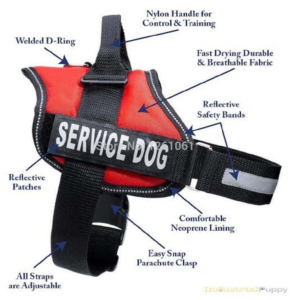 Service Dog Vests And Patches Service Dog Vest