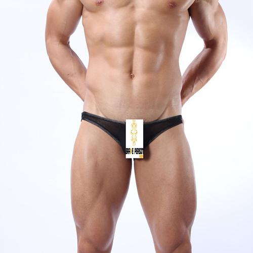 Brand New Fashion Sexy Men Underwear Man Lace Mesh Thongs Sexy Mens Thongs BW1127(China (Mainland))
