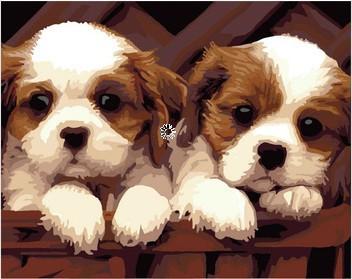DIY Needlework diamond painting Animal Series Lovely Dog 30*40cm cross stitch square drill full rhinestone home decor(China (Mainland))