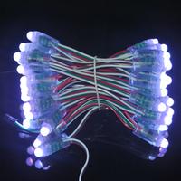 Decoration lighting promotrion 1000pcs DC12V IP68 Waterproof full color Programmed WS2801 pixel rgb led lighting string