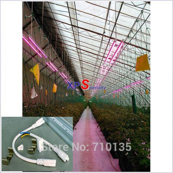 T5 levou crescer tubo de luz 2015 para vermelho : azul para 6:1 4:1 2:1 fontes do jardim 9-24watt led planta crescer luz vermelho azul de crescimento da planta(China (Mainland))