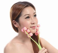 post free Rose facial massage Beauty Face Roller Device Face-lift Massage Relaxation Face Care Tool