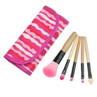 2015 New Makeup Tools Products 5 pcs Makeup Brushes Set Eyeshadow Blush Lip Gloss Pen Pink And White Stripe Case