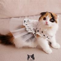 Dog clothes wedding dress princess dress teddy  Pet Dresses