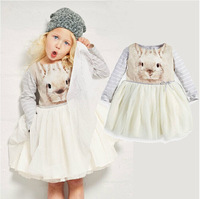 2015 Girls new spring / fall princess dresses wholesale lace tutu clothing    BB411DS-46