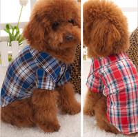 Dog T-shirt 2015