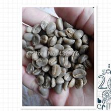 YItianmanor 2015 ZHAIZAI 13 16 1lb bag catimu yunnan new crops chinese coffee green bean smooth