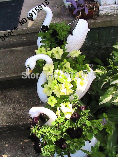 Карликовое дерево Seeds 001 30pcs DIY bonsai 001 карликовое дерево seeds 10pcs diy