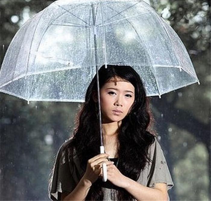 20pcs/lot Apollo umbrella Thicken Windproof Transparent Cute Bubble Deep Dome Umbrella(China (Mainland))