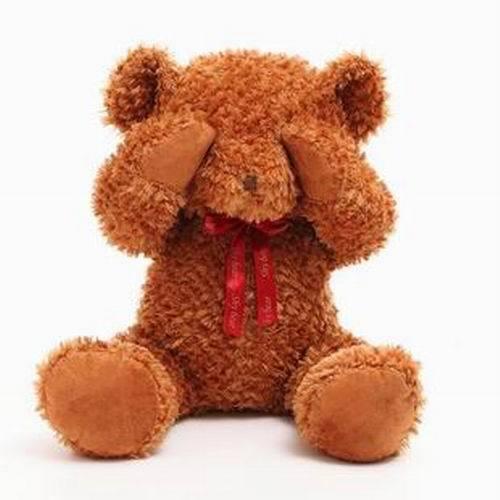 New arrival 100cm shy pose giant stuffed teddy bear big stuffed animals pp cotton soft toy girls birthday valentine gift(China (Mainland))