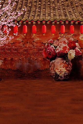 600CM*300CM(20ft*10ft) Chinese style flower lantern Adobe house phoptography backdrop background for photo studio 2106(China (Mainland))