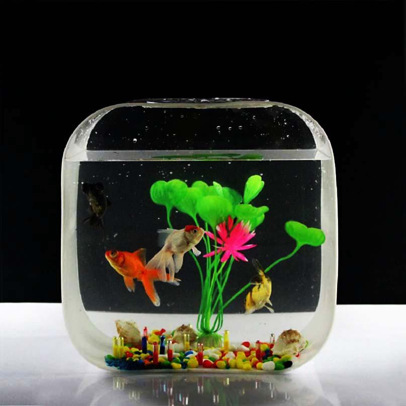 Imported Acrylic plexiglass aquarium fish tank mini fashion creative ...