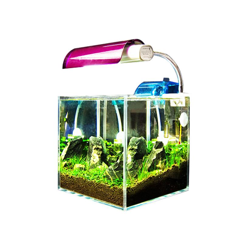 Crazy plants] [25 square cylinder entry level white collar desk ...