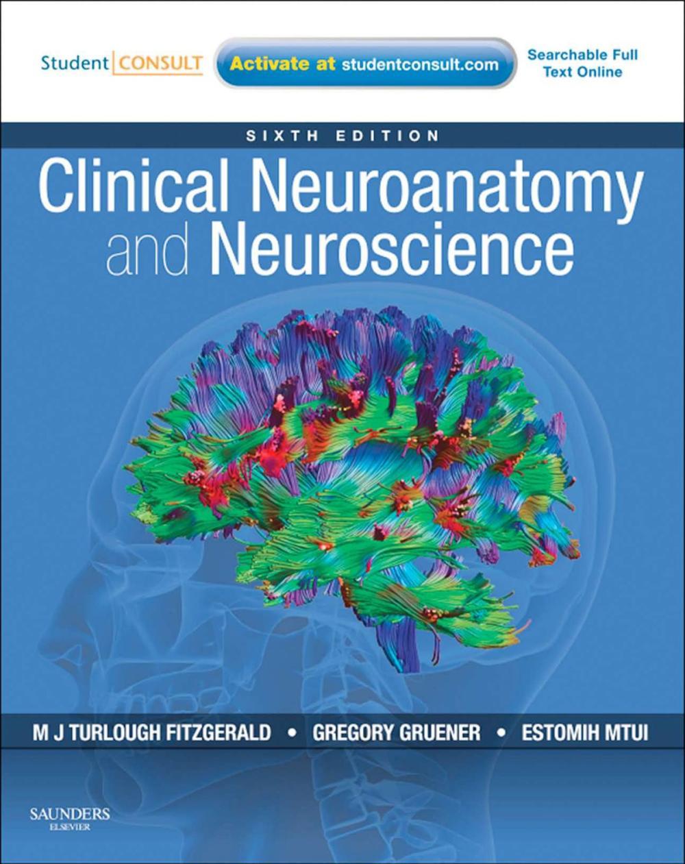 Нейроанатомия