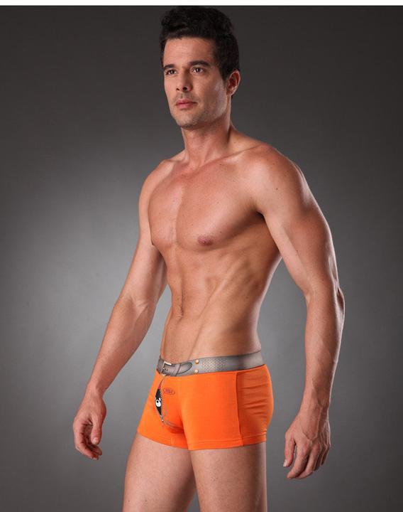 New arrival High Quality Men's Underwear Modal Men's shorts Brief brand underwear for men gift Animal print(China (Mainland))