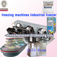 Air cooled refrigeration Condensing Units for cold room supermarket cabinet freezers