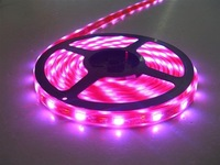 5m(one roll) 5050 SMD 30LEDs/m led strip,waterproof by silicon tubing and coating;warm white color;can be used underwater;IP68