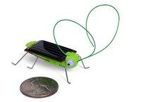 Free shipping new design solar toy solar locust solar grasshopper intelligent toy educational toy