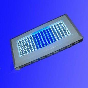 120w Led Aquarium Light;white(9000k-10000k):blue (460nm)=2:1;7000lm