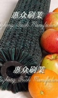 Food and Fruit Cleaning Brush Roll